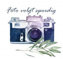 Achillea Nobilis Donker blauw