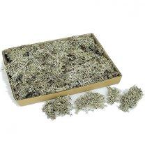Lychen mos, grey moss, 1 kilo