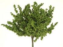 pyra cluster bush groen 36cm