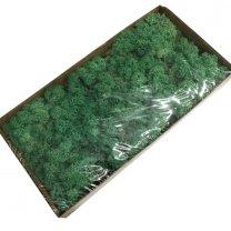 Ijslandsmos pacific groen, 80 gram
