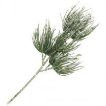Pinus tak grof met witte sneeuw, 36cm