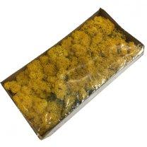 Ijslandsmos Geel, 80 gram