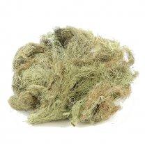 Hair mos 50gram