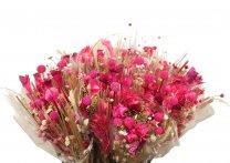 Gedroogd gemengd boeket Fantasia Fuchsia-Roze