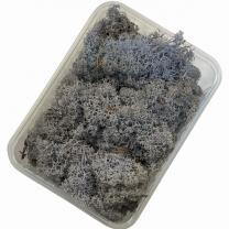 ijslandsmos lavendel, 80 gram