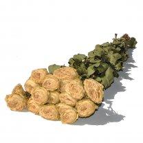 Bos droogbloemen Gedroogde roosjes Oud roze, 45cm