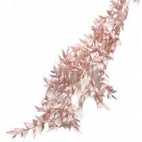 Gedroogde Ruscus Lichtroze roze, 3 takken, 60cm