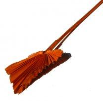 Palm Spear Oranje