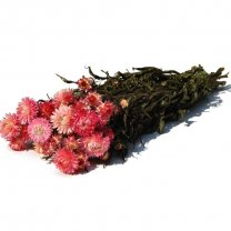 Gedroogde Helichrysum Roze, 3 stelen, 35cm