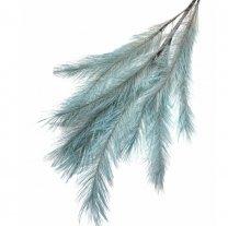 Panicle Grass Lichtblauw, 75 Cm