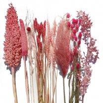 Droogbloemen mix roze met Babala en kafferkoren, 60cm
