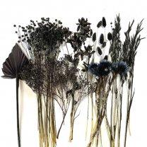 Droogbloemen mix Zwart, met 7 verschillende soorten, 35cm