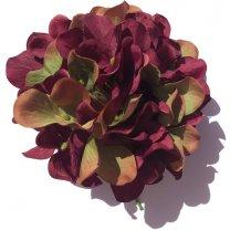 Hortensia bloem bordeaux paars