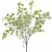 Kunsttak Penningkruid met lichtgroen blad,
