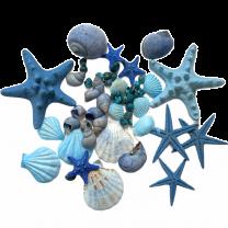 Blauwe schelpenmix met zeesterren