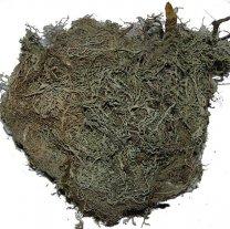 forestmos naturel, tillandsia, 30 gram