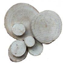 Schijfje van hout, whitewash