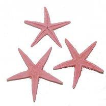 Lichtroze zeesterren, 6cm