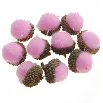 Roze eikeltjes, 10stuks, 3cm