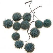 Plataanballetjes grijsblauw