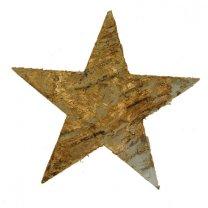 Ster van schors, oud-goud, 9cm