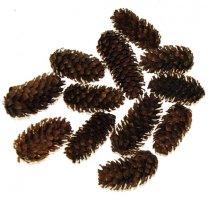 WEER op voorraad; Dennenappeltjes, pinecone spruce naturel, 3-5cm