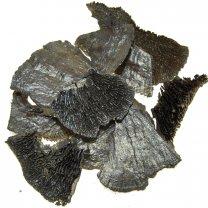 Spons paddenstoel platina, 25 gram