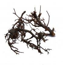 Gedroogde Bonsai takjes naturel, Iron bush,  3 takken