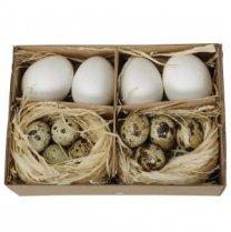 PRE-ORDER** week 5 leverbaar; Set van kippeneieren en kievitseitjes