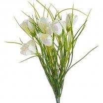 Witte krokus,  35cm
