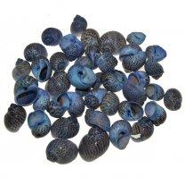 Natica Tigrina blauw, 100 gram