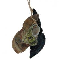 Hanger met Capiz schelpen Troca Maculata green, 10cm
