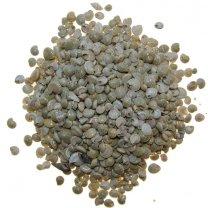 Umbonium white, lichte strandzand kleur, 100gram