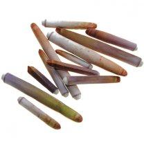 zee-egel pennen roze-paars-groen, 4-6cm
