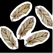 Houten veertje naturel, 5 stuks, 5cm