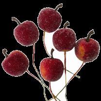 Rode gesuikerde appeltjes, 6 stuks, 25mm