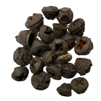 Eucalyptus pod naturel, 50 gram