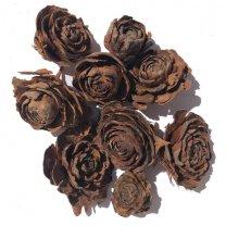 Cedar roos, Ø 3-5cm, 40 stuks, 170 gram
