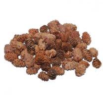 Dennenappeltjes, baby spruce naturel, 2-3cm, 50 gram