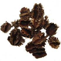 Arjun naturel bruin, per 30 gram
