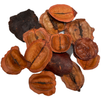 Jacaranda zaden oranje, 35 gram