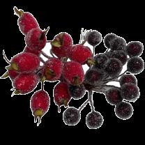Gesuikerde rozenbottels en bordeaux besjes