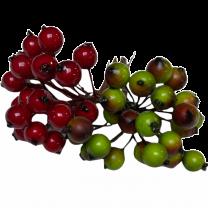 Groene besjes en rode besjes 48 stuks