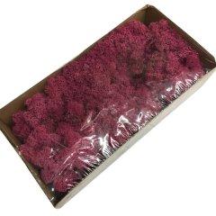 Ijslandsmos erika, 80 gram