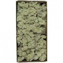 ijslandsmos naturel,  80 gram