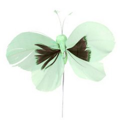 Butterfly mintgroen, 6x10cm