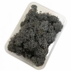 ijslandsmos, rendiermos, antraciet, 80 gram