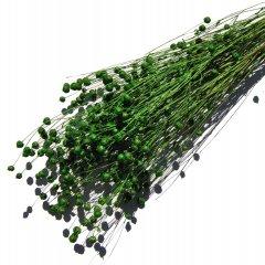 Gedroogde Lino vlas Smaragd groen
