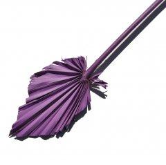 Palm Spear Violet