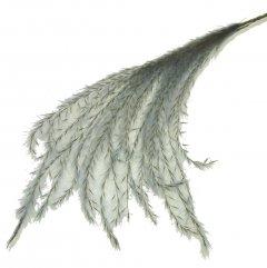 30% korting; Stipa Feather Grijsblauw